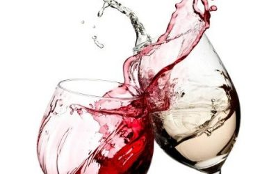 Tu Vino, buen vino a buen precio